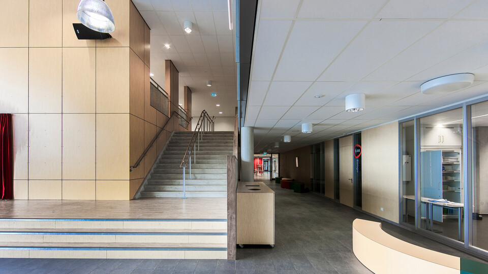 Featured products: Rockfon® Tropic™, A24, 1200 x 600